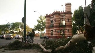 Temporal en Sevilla