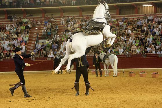 Jerez lució sus encantos en Zaragoza