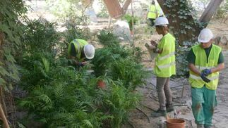 Cuidado de plantas en el pabellón de la Naturaleza.  Foto: Belén Vargas