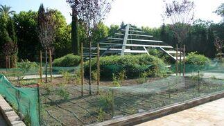 Jardines del Guadalquivir.  Foto: Belén Vargas