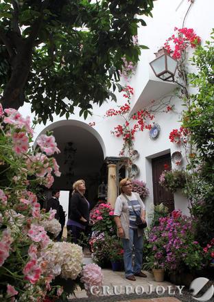 Galería de fotos de los patios cordobeses
