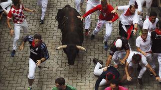 Encierro de los toros de Núñez del Cuvillo