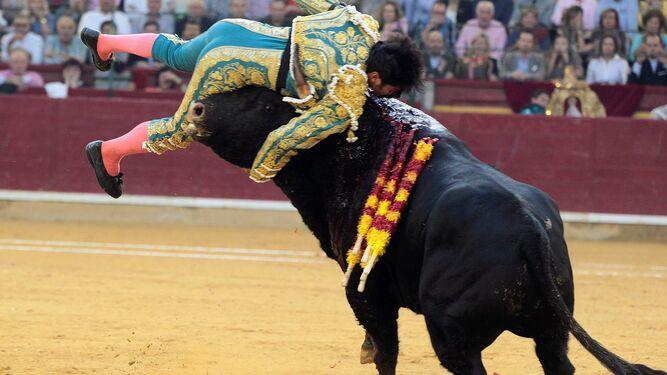 Cayetano, levantado por el toro.
