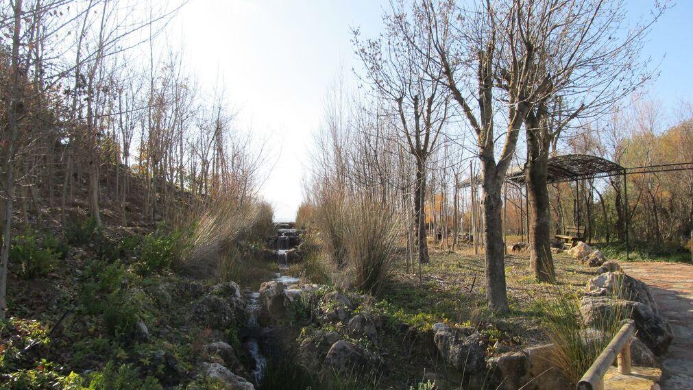 Un paseo por el Jardín Micológico La Trufa