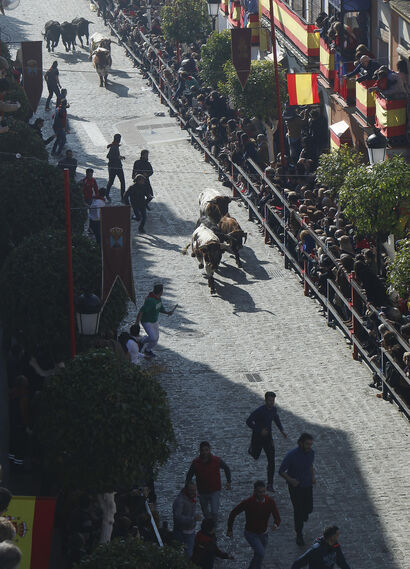 Encierro de reses bravas en La Puebla del Río