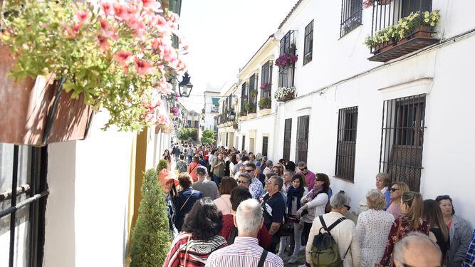 Larga cola en Marroquíes, 6.
