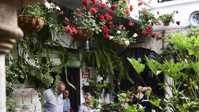Rosario Torrealba, en su patio, ubicado en la calle Céspedes, 10.
