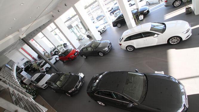 Coches expuestos en un concesionario de Audi.