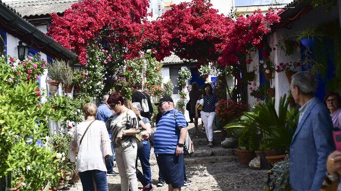 La Ruta De Patios De Santa Marina Se Convierte En La Mas Visitada De