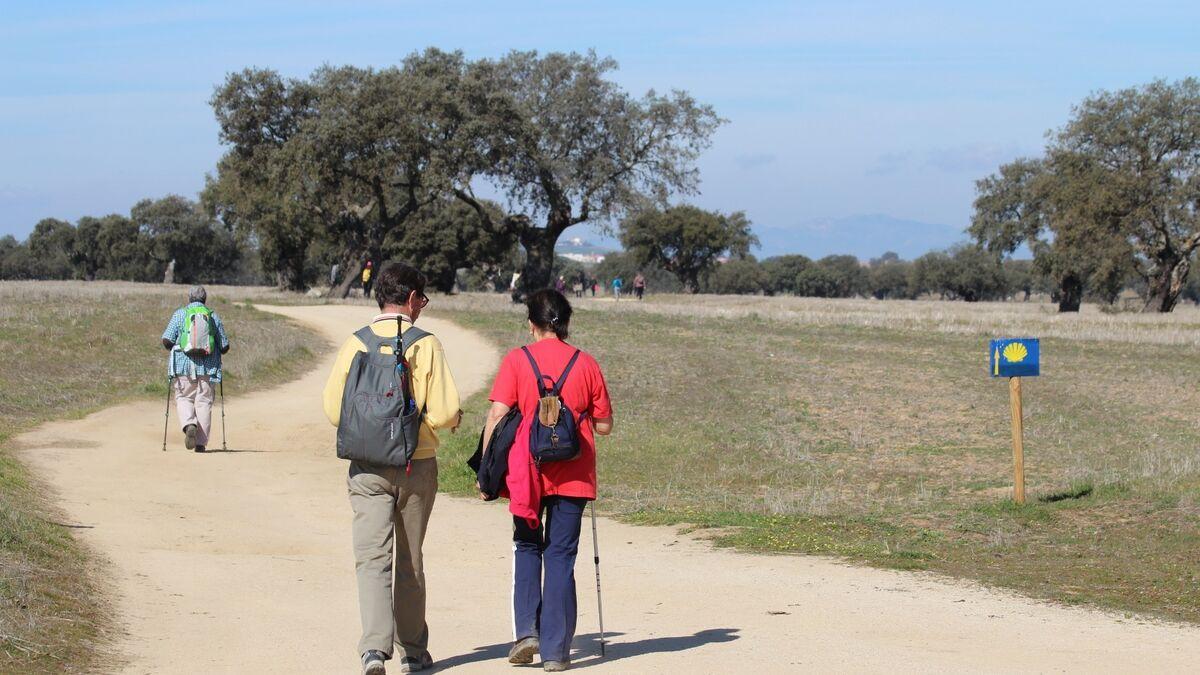 Participantes en una de las rutas del Camino Mozárabe a su paso por Córdoba.